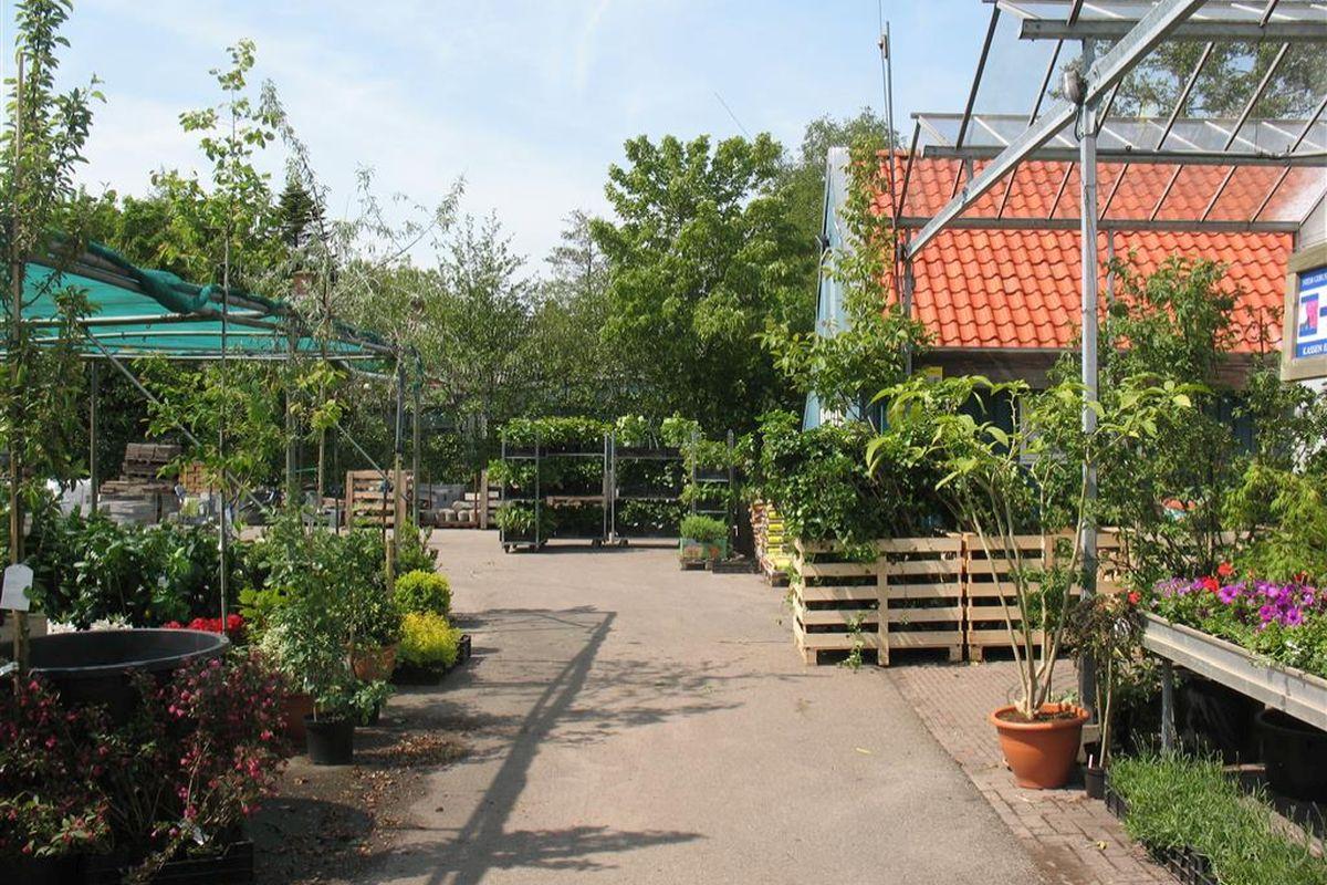 tuincentrum in Friesland (9) 1200x800